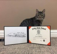 Dave Posing with his Valley High Certificate